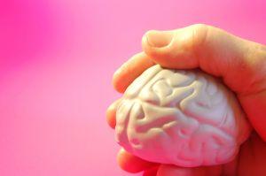 Gehirn in Hand